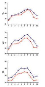 Activación del cuádriceps durante dos tipos de sentadilla