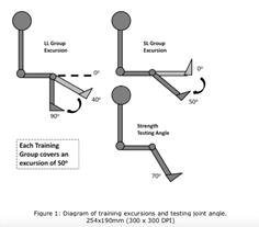 Diferentes posiciones en acortamiento y estiramiento
